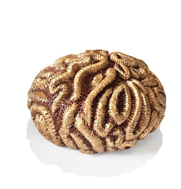 Coral Artist: Hemrod Duran Medium: terracotta ceramic artwork Dumaguete exhibit